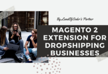 Magento 2 Dropshipping Business
