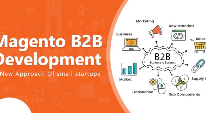 magento b2b development