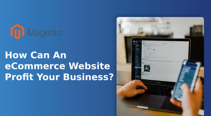 How Can An eCommerce Website Profit Your Business?