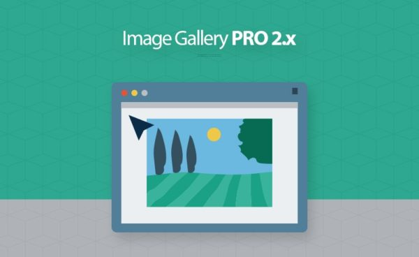 magento 2 image gallery pro extension