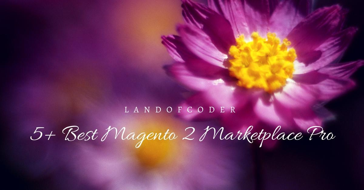 5+ BEST MAGENTO 2 MARKETPLACE PRO Premium