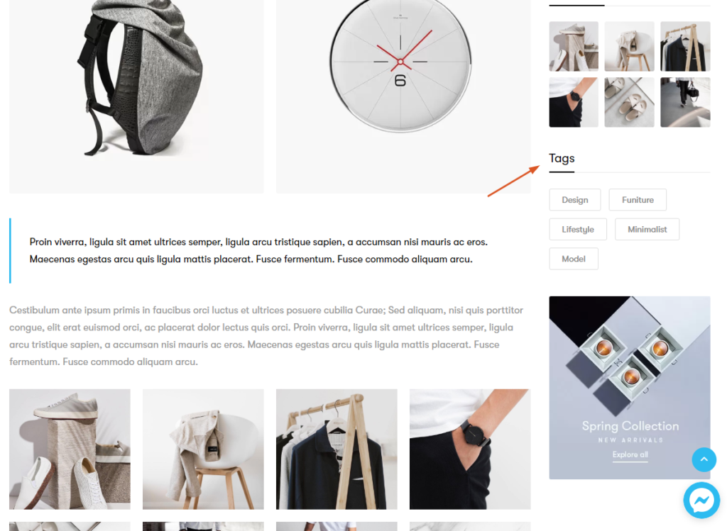 Product Tags in the Blog website