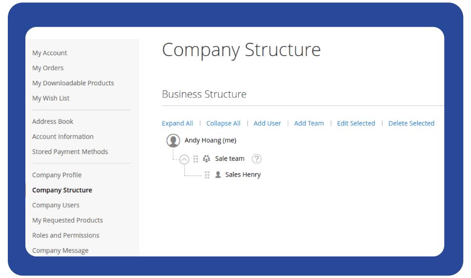 manage magento 2 company account