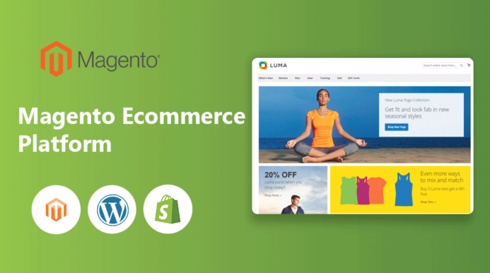 magento-ecommerce-platform-vs-wordpress-vs-shopify
